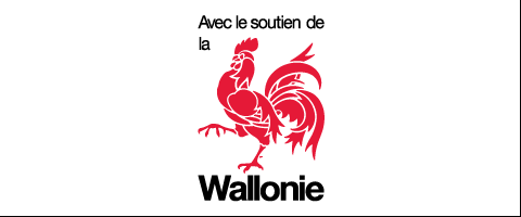 Walloon projects